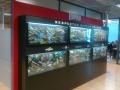 Rapala akvaariot